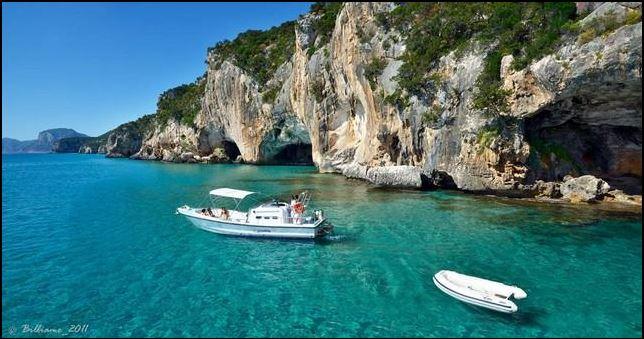 Verso lArea Marina Protetta di Cala Gonone, cos? torner? la Foca ...